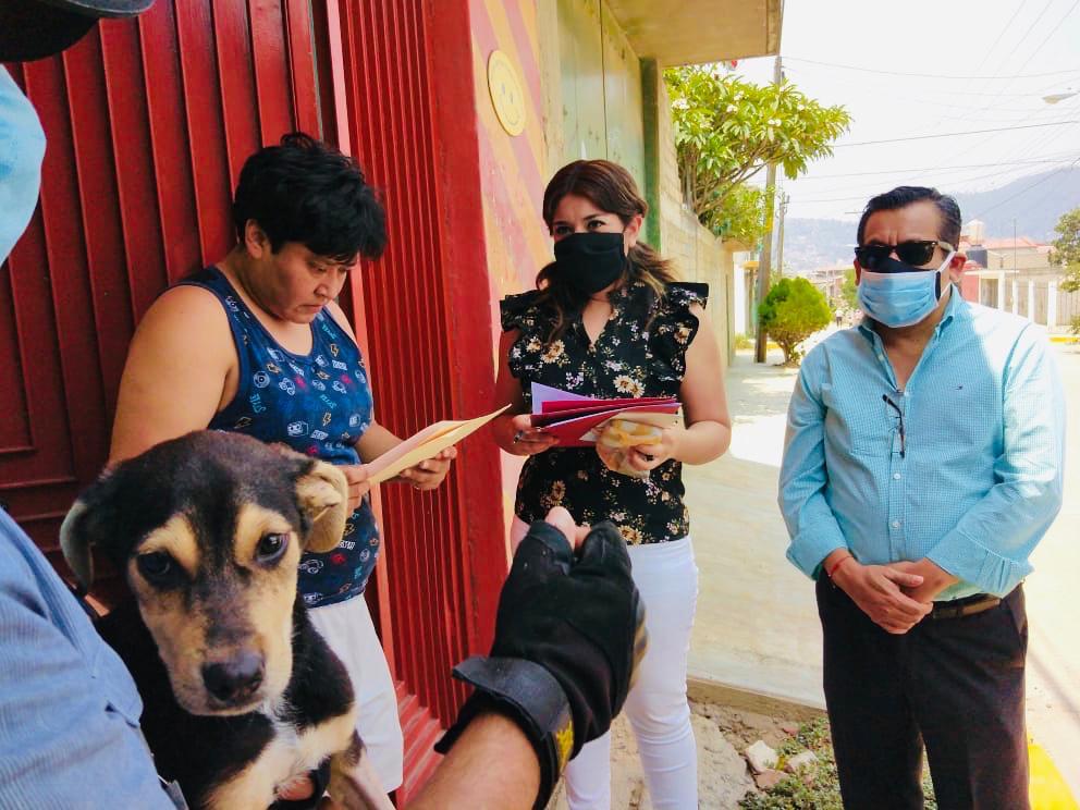Encuentra Ayuntamiento de Oaxaca hogar responsable a canino abandonado